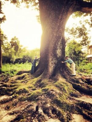 北河様祇園ご神木